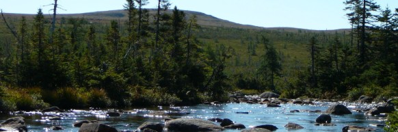 cropped-newfoundland_lake_and_rocks.jpg