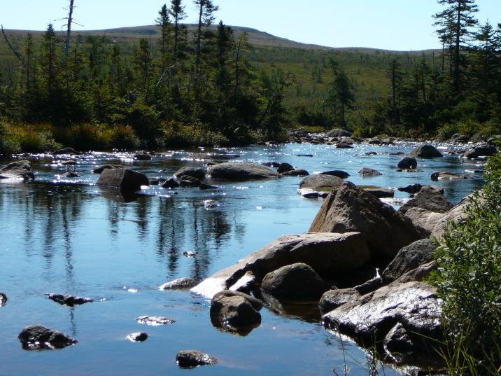 Newfoundland Reminds Me of the Catskills