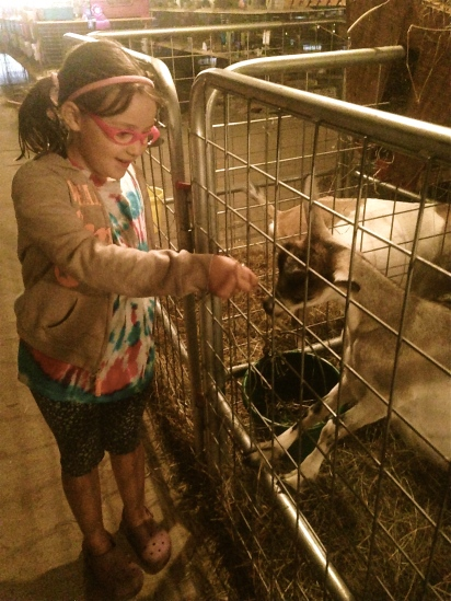 Feeding the goats...just a tip of the agricultural iceberg