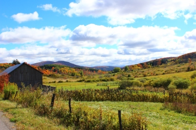 Catskill Big Sky Country