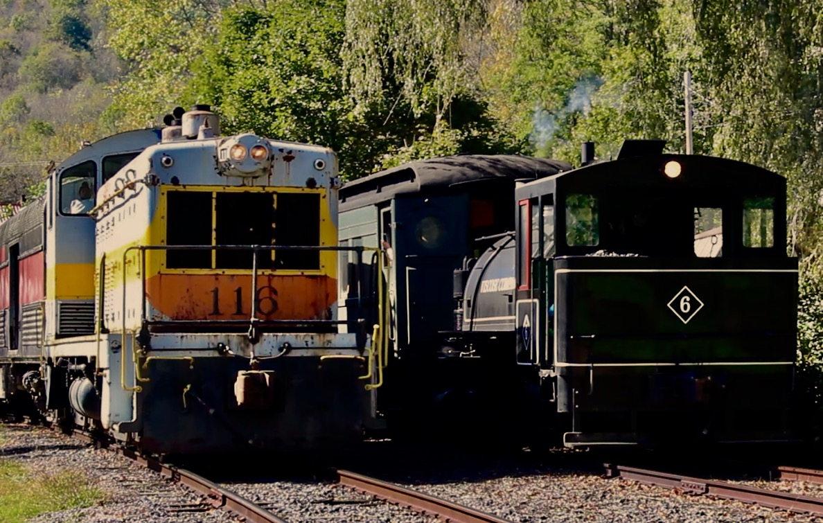 Steam and Diesel locomotives side by side DURR